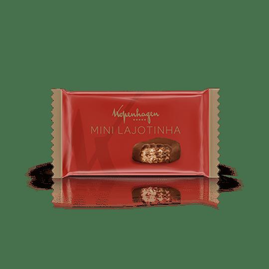 Mini-Lajotinha-500G